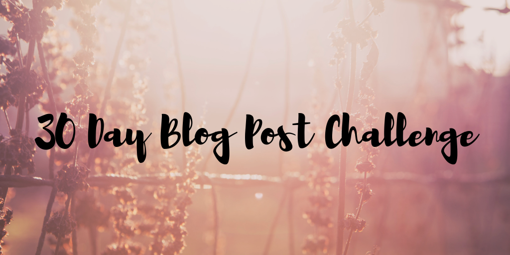 30 Day Blog Post Challenge: Number 1
